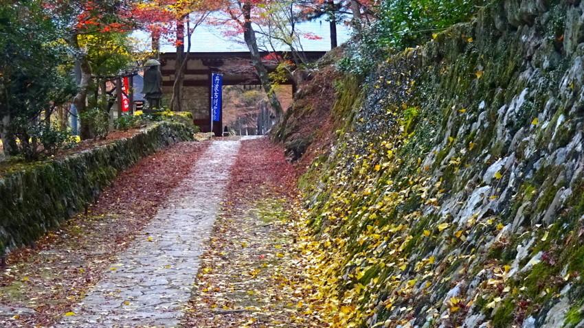 f:id:shioshiohida:20171117151219j:plain