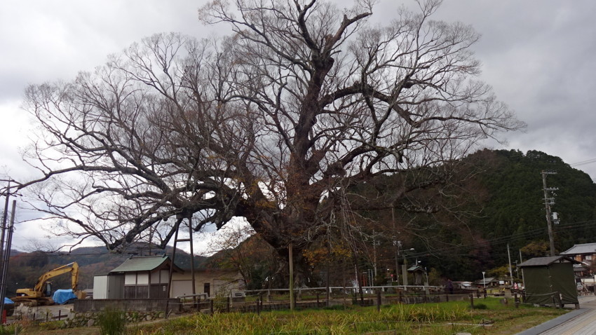f:id:shioshiohida:20171121112621j:plain