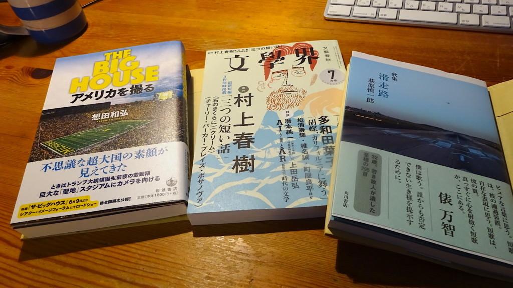 f:id:shioshiohida:20180620111223j:plain