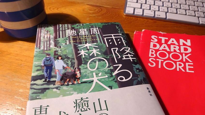f:id:shioshiohida:20181017232359j:plain