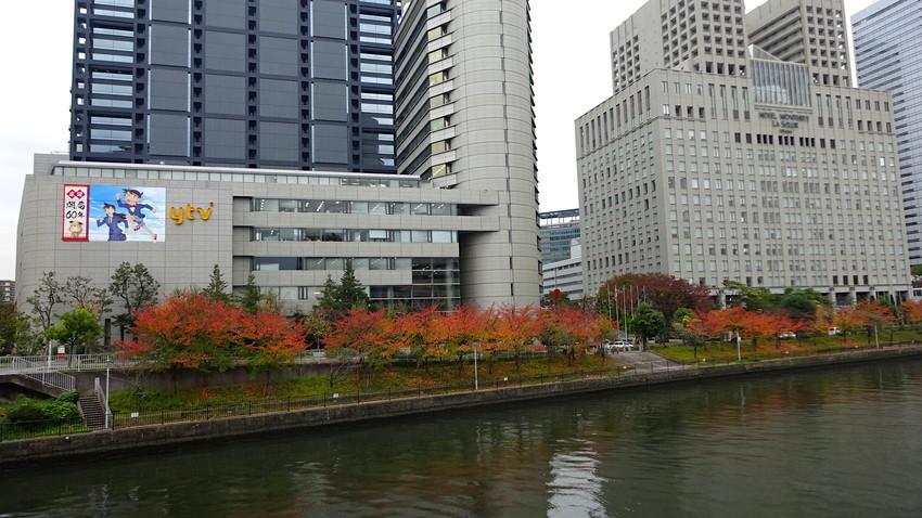 f:id:shioshiohida:20181112152644j:plain