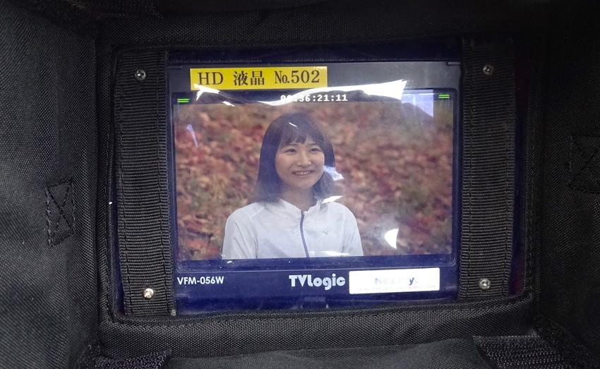 f:id:shioshiohida:20181116093231j:plain