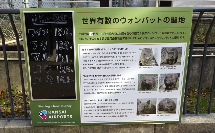 f:id:shioshiohida:20181130131032j:plain