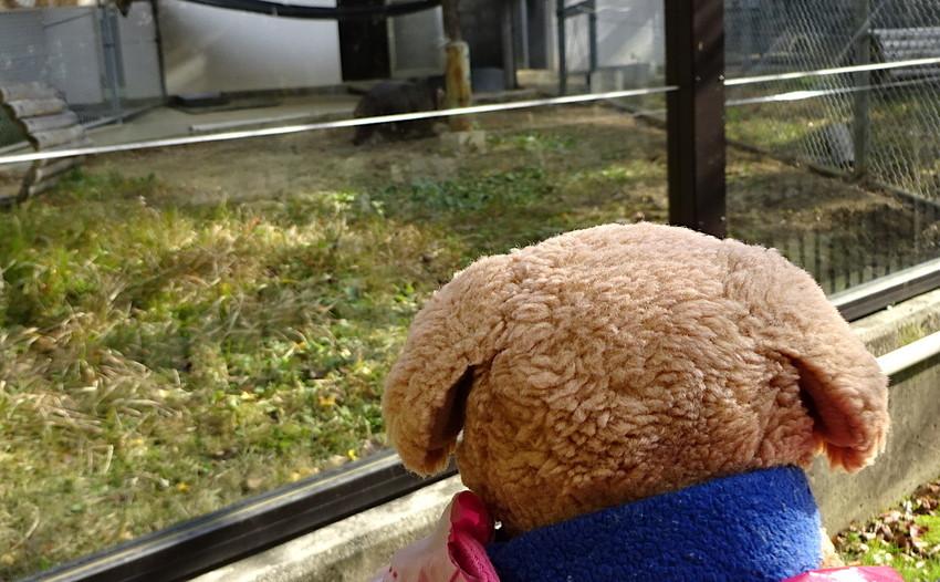 f:id:shioshiohida:20181130132831j:plain