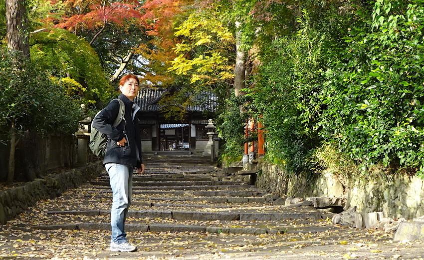 f:id:shioshiohida:20181130145716j:plain