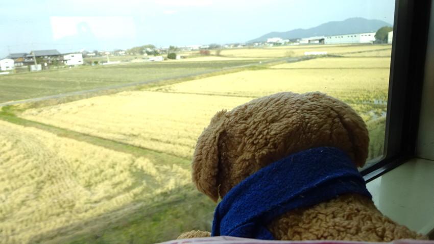 f:id:shioshiohida:20190108104421j:plain