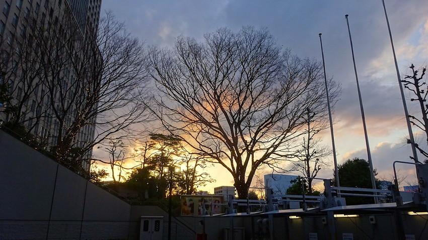 f:id:shioshiohida:20190316174917j:plain