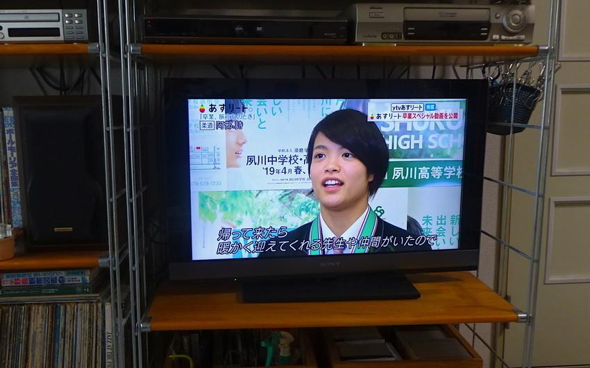 f:id:shioshiohida:20190330113935j:plain