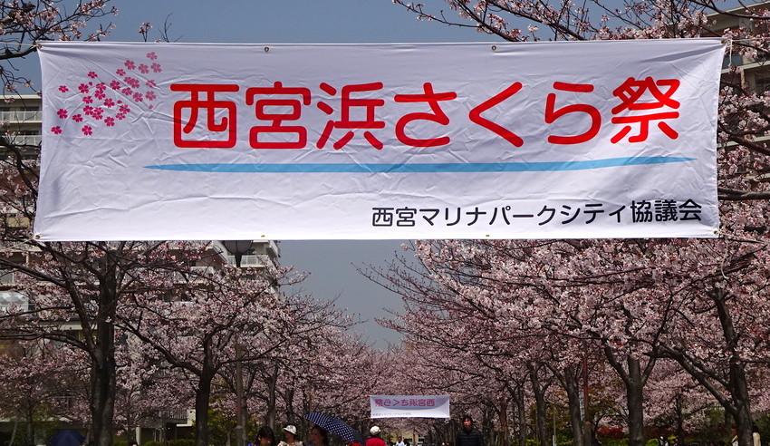 f:id:shioshiohida:20190407115257j:plain