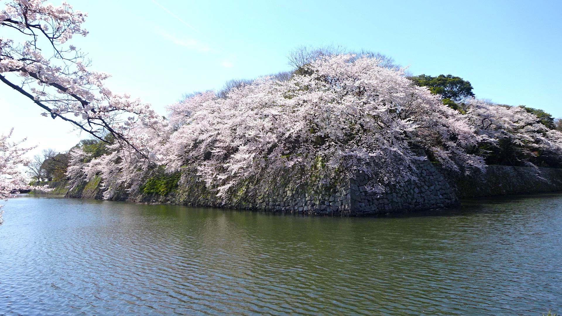 https://cdn-ak.f.st-hatena.com/images/fotolife/s/shioshiohida/20190409/20190409123350_original.jpg