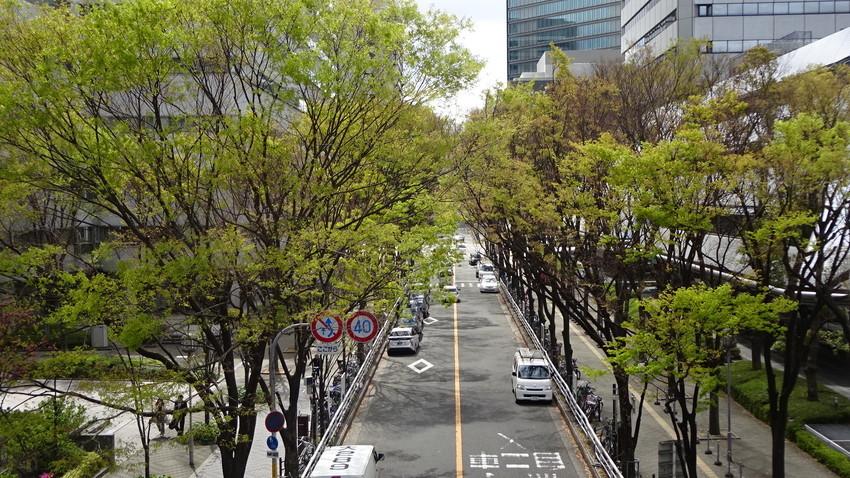 f:id:shioshiohida:20190411111550j:plain
