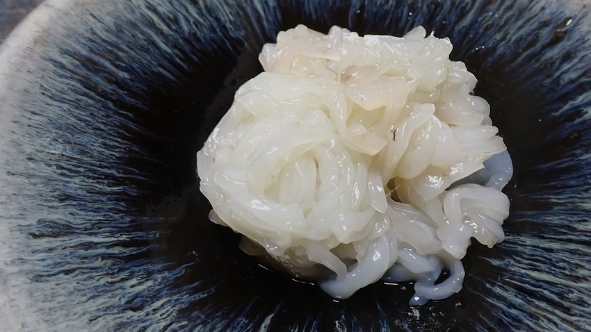 f:id:shioshiohida:20190814192039j:plain