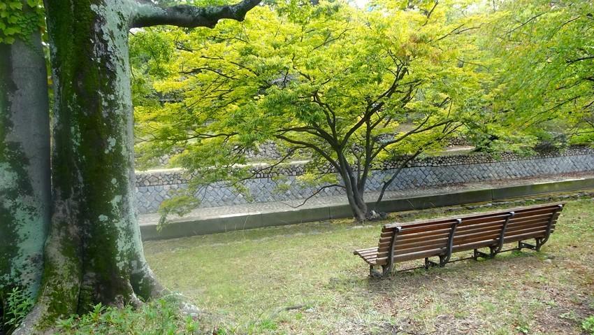 f:id:shioshiohida:20191022114235j:plain