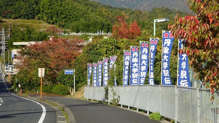f:id:shioshiohida:20191115154813j:plain