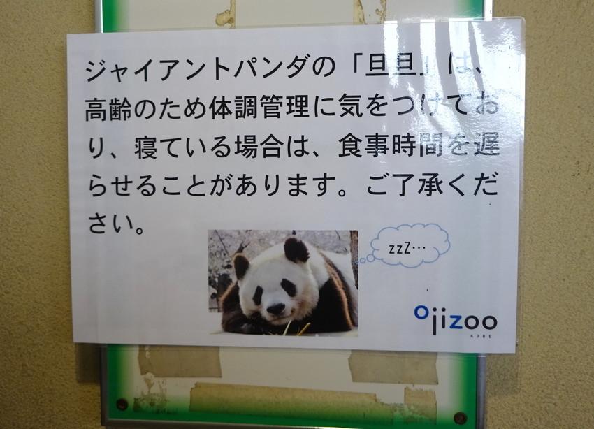 f:id:shioshiohida:20191119152313j:plain