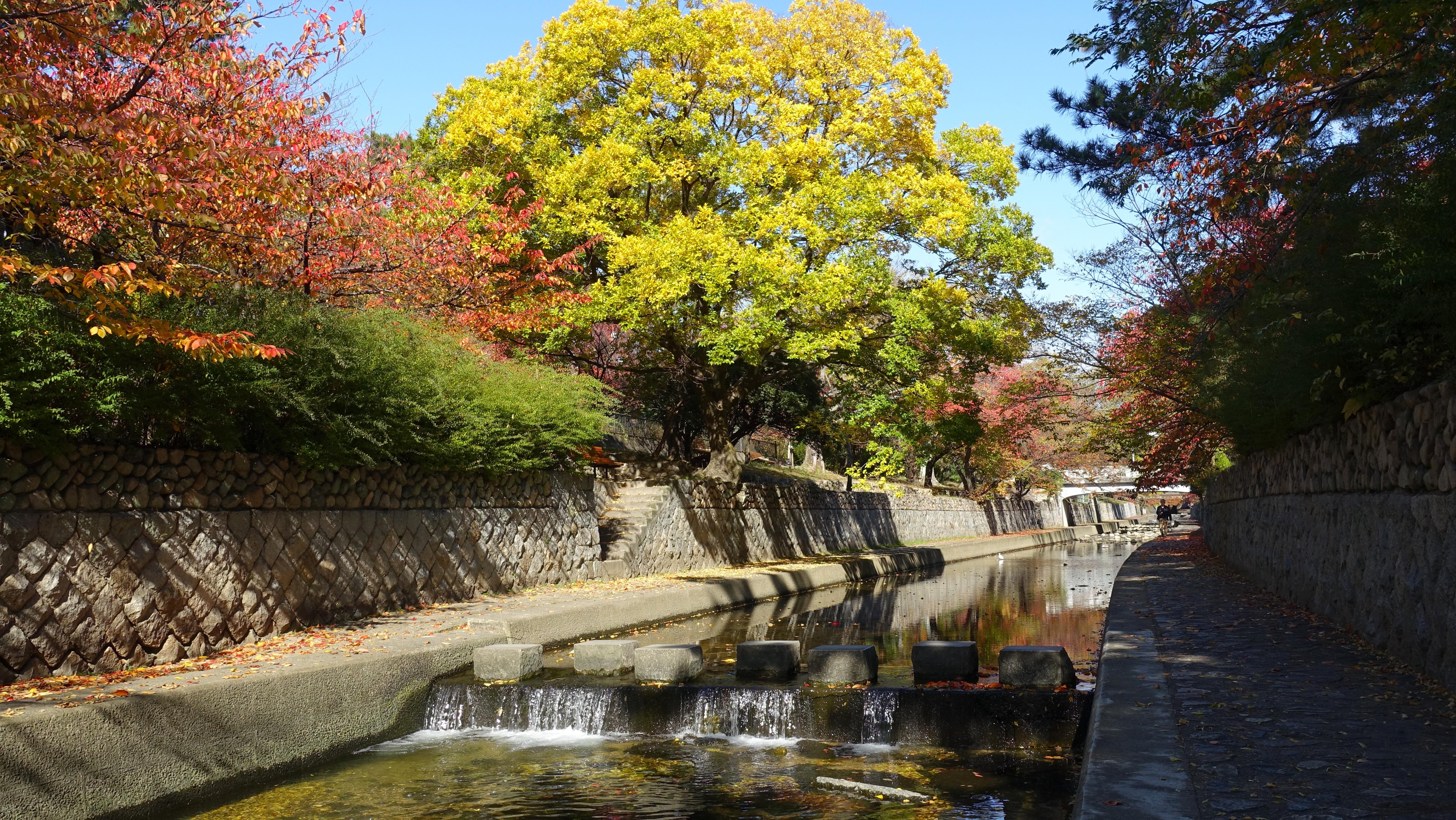 https://cdn-ak.f.st-hatena.com/images/fotolife/s/shioshiohida/20191120/20191120105450_original.jpg