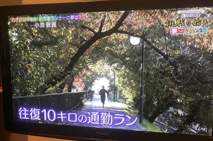 f:id:shioshiohida:20191127131527j:plain