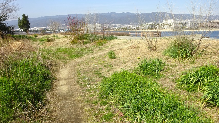 f:id:shioshiohida:20200303135040j:plain