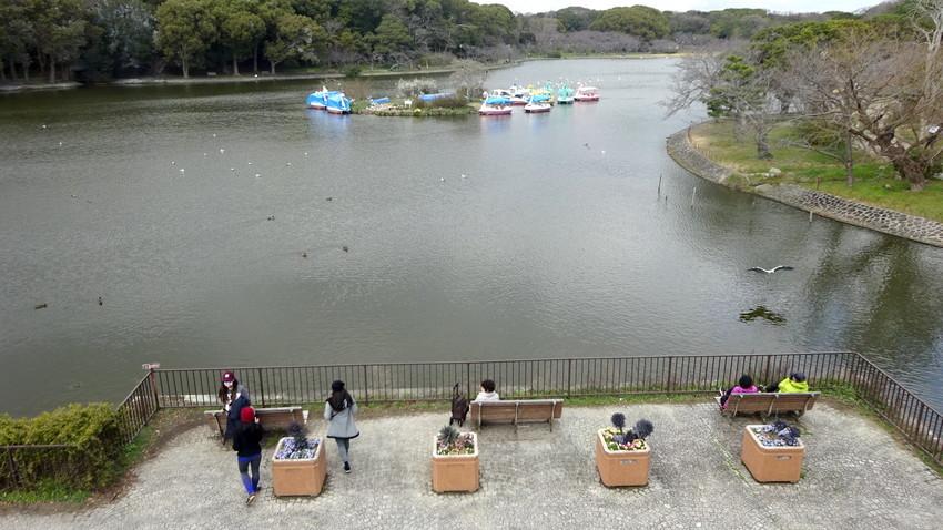 f:id:shioshiohida:20200312012549j:plain