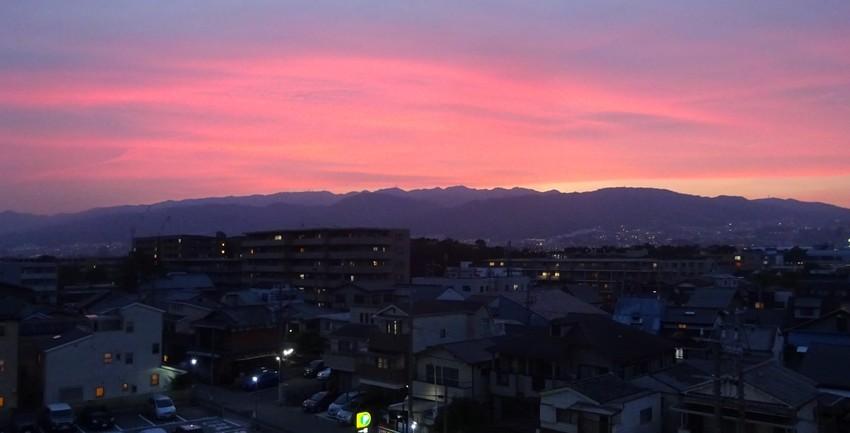 f:id:shioshiohida:20200603192438j:plain