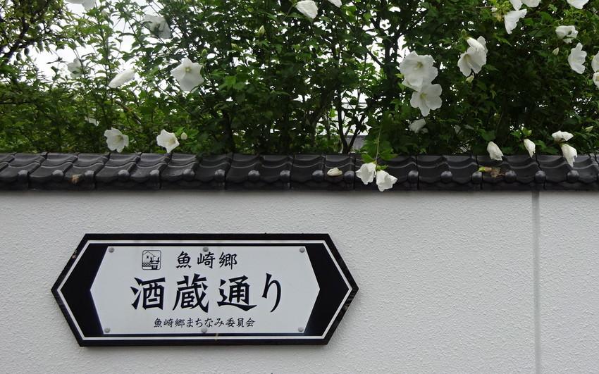 f:id:shioshiohida:20200714141721j:plain