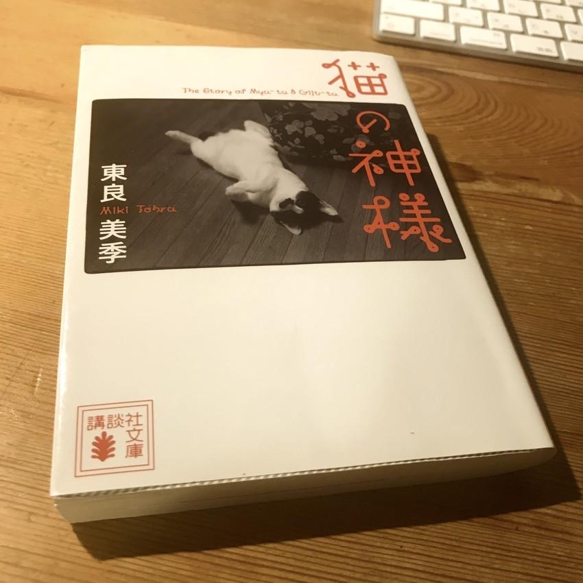 f:id:shioshiohida:20200825230519j:plain