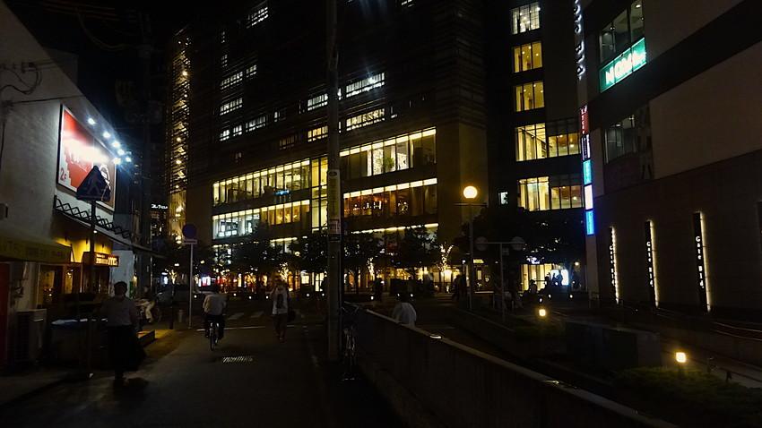 f:id:shioshiohida:20200926184619j:plain