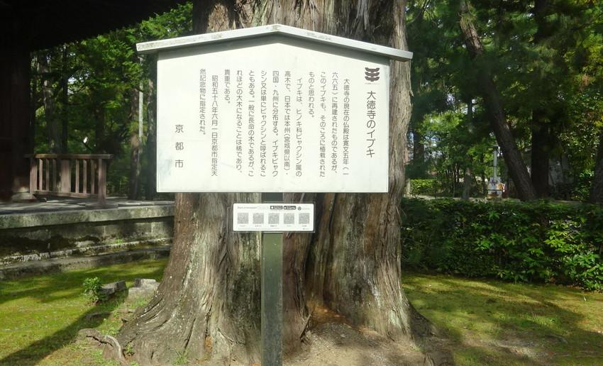 f:id:shioshiohida:20200929142005j:plain