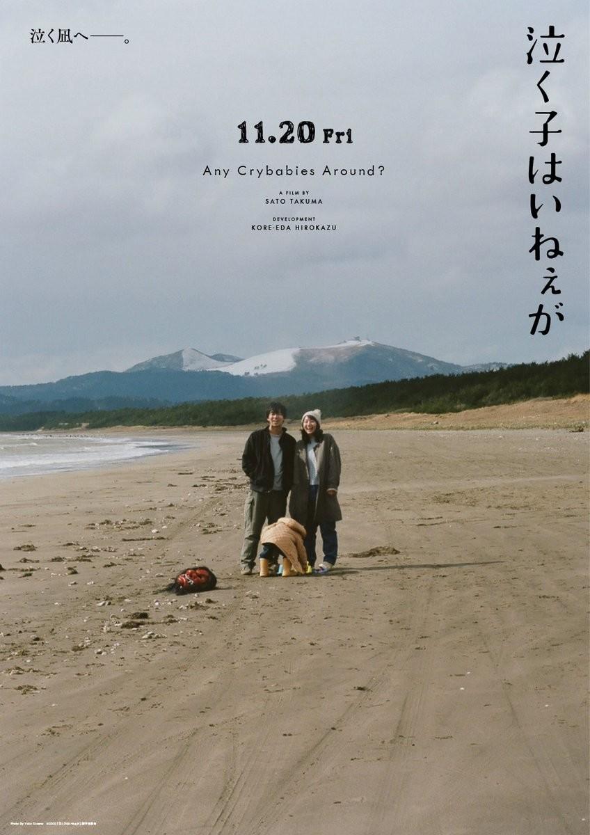 f:id:shioshiohida:20201129205410j:plain