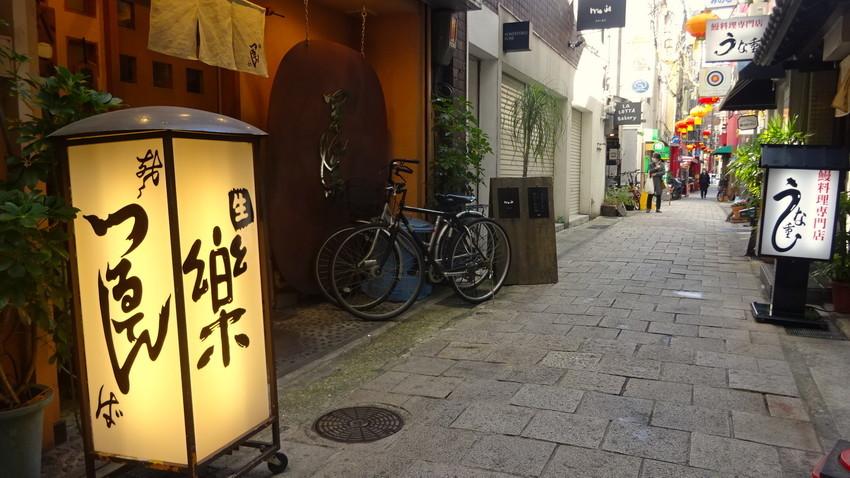 f:id:shioshiohida:20201204130729j:plain