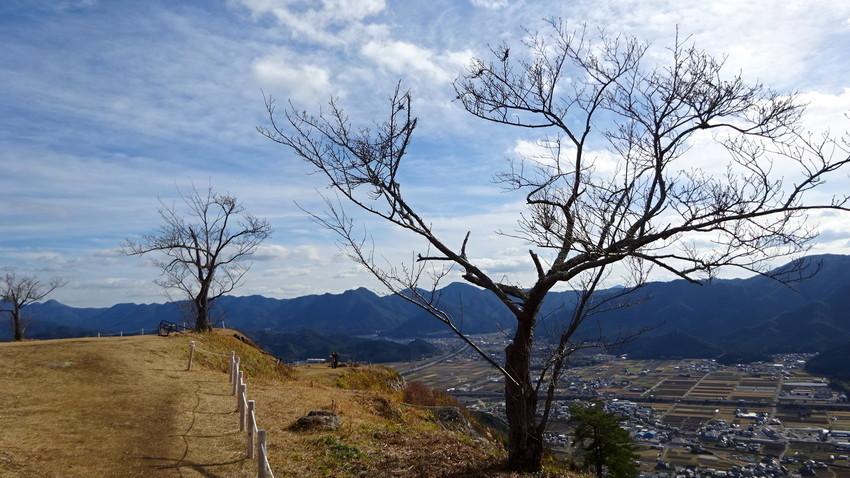 f:id:shioshiohida:20210106131830j:plain