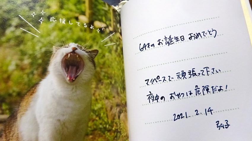 f:id:shioshiohida:20210214214611j:plain