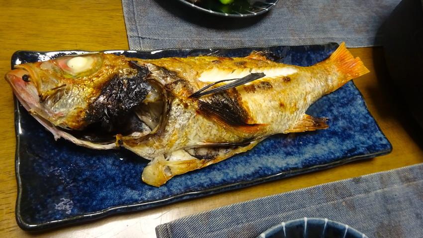 f:id:shioshiohida:20210215115920j:plain