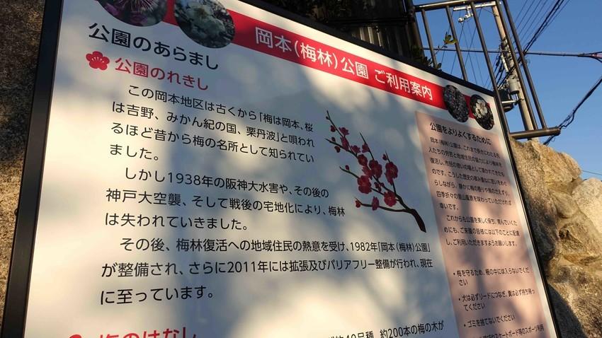 f:id:shioshiohida:20210219165100j:plain