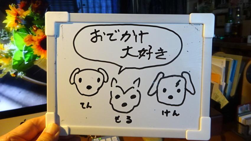 f:id:shioshiohida:20210402112746j:plain