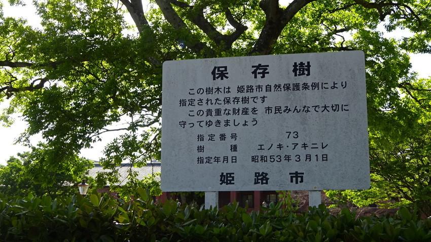 f:id:shioshiohida:20210426153745j:plain