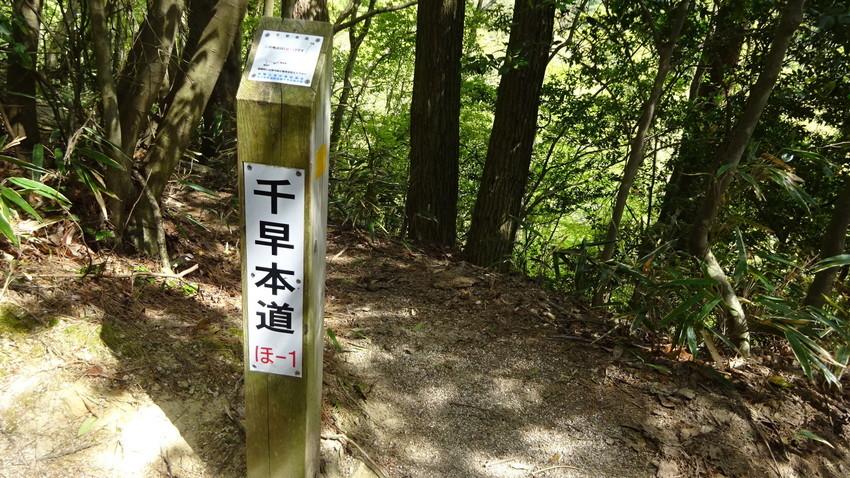 f:id:shioshiohida:20210427143745j:plain