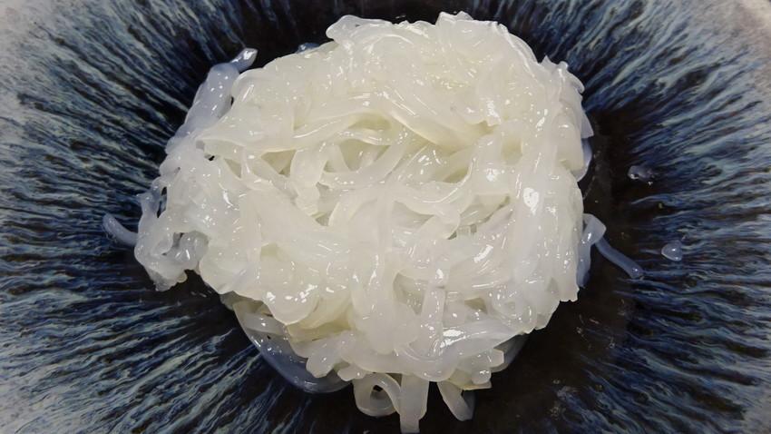 f:id:shioshiohida:20210430194356j:plain