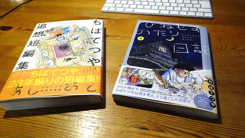 f:id:shioshiohida:20210504222428j:plain