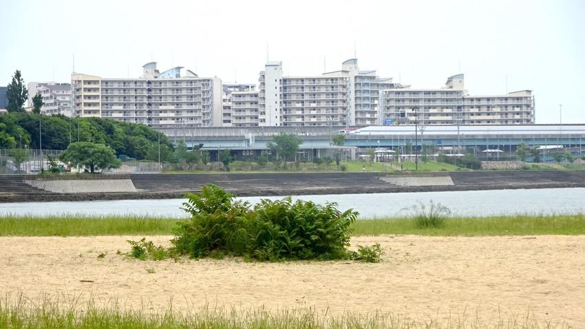 f:id:shioshiohida:20210524102331j:plain