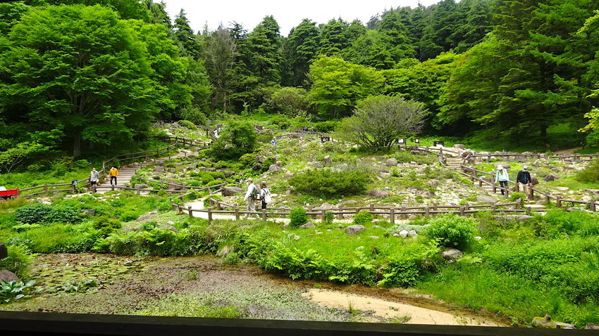 f:id:shioshiohida:20210528123715j:plain