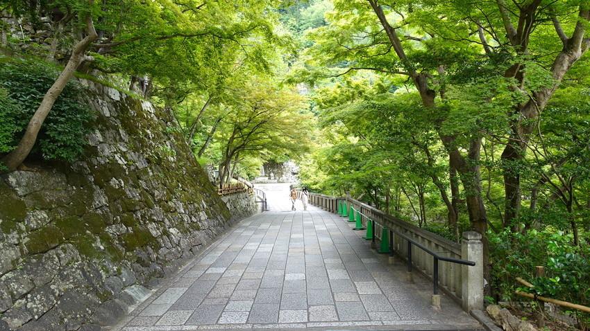 f:id:shioshiohida:20210608145232j:plain