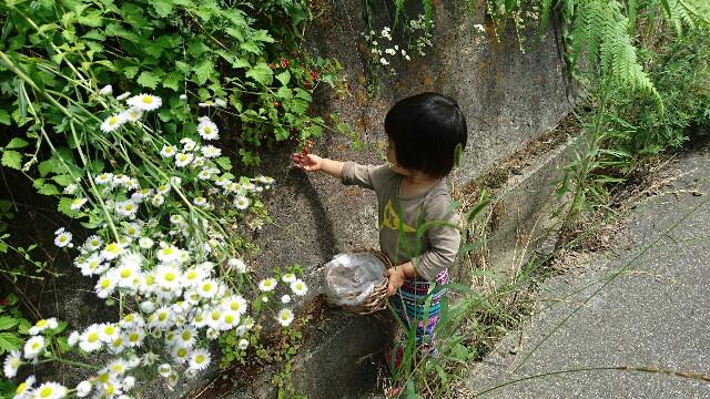 f:id:shiotaman:20160710111949j:image