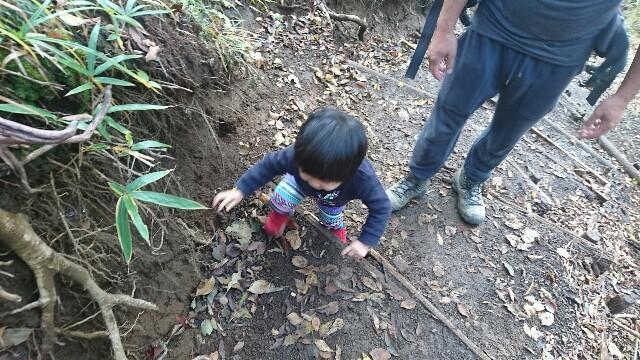 f:id:shiotaman:20161119151241j:image