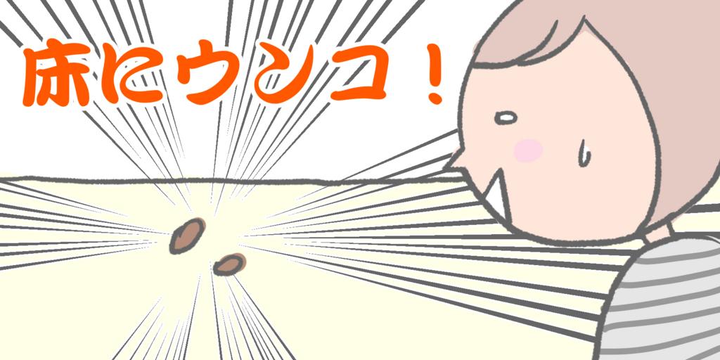 f:id:shiotaman:20171210125217j:plain