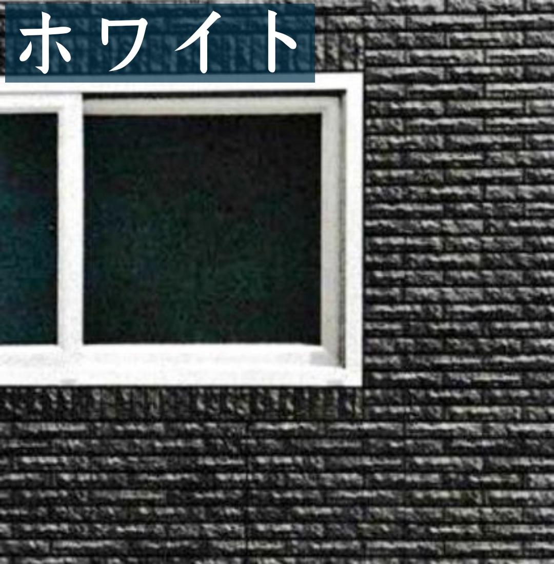 f:id:shioyan1130:20210306073928j:plain