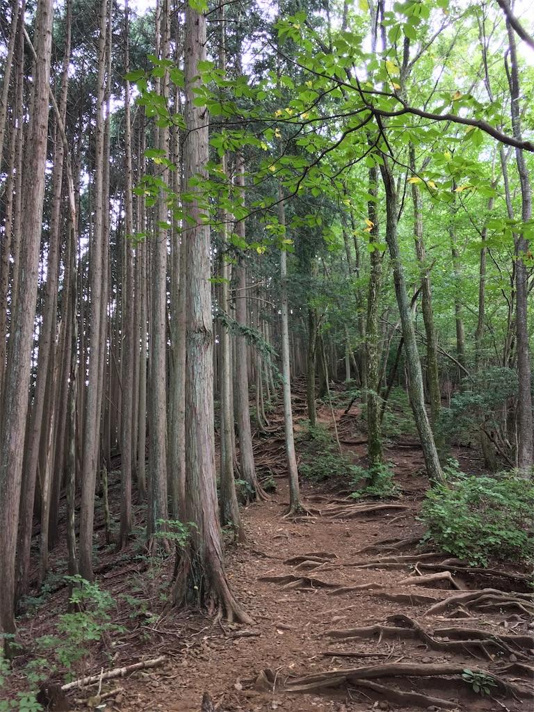 f:id:shioyan3:20160927190934j:image