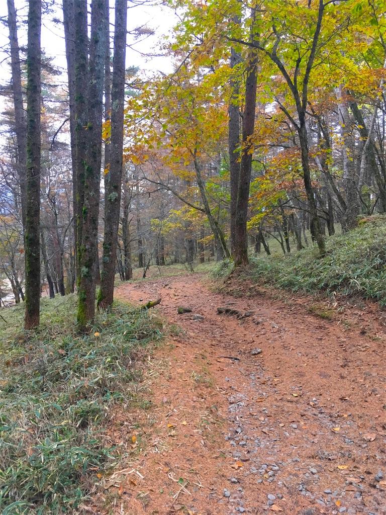 f:id:shioyan3:20161105013057j:image
