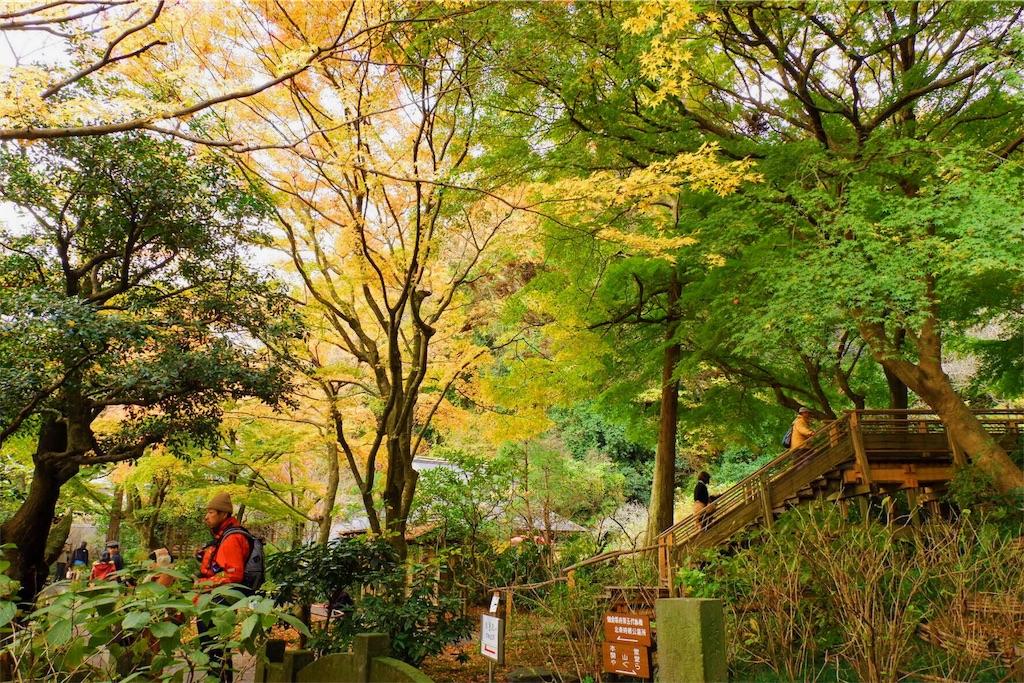 f:id:shioyan3:20161201211935j:image