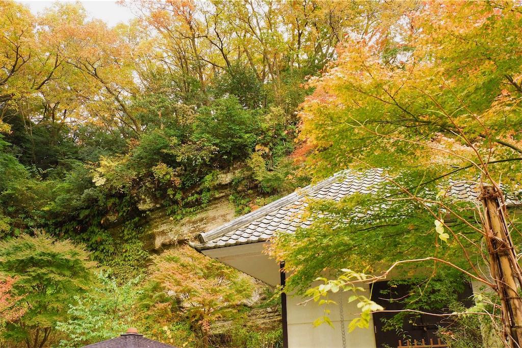 f:id:shioyan3:20161201212022j:image